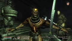 The Elder Scrolls IV: Shivering Isles Screenshot # 1