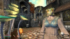 The Elder Scrolls IV: Shivering Isles Screenshot # 10