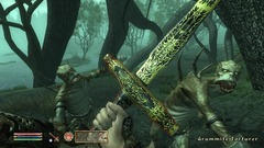 The Elder Scrolls IV: Shivering Isles Screenshot # 6