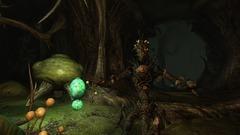 The Elder Scrolls IV: Shivering Isles Screenshot # 9