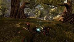 Divinity II: Ego Draconis Screenshot # 18