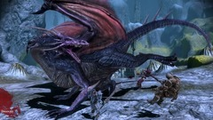 Dragon Age: Origins Screenshot # 11