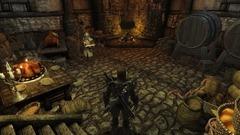 Divinity II: Flames of Vengeance Screenshot # 6