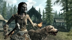 The Elder Scrolls V: Skyrim Screenshot # 27