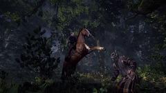 The Witcher 3: Wilde Jagd Screenshot # 13