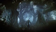 The Witcher 3: Wilde Jagd Screenshot # 17