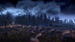 The Witcher 3: Wilde Jagd Screenshot # 8