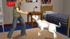 Die Sims 2: Haustiere Screenshot # 12