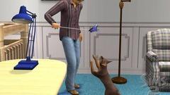 Die Sims 2: Haustiere Screenshot # 16