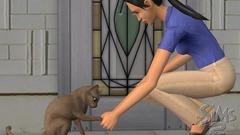 Die Sims 2: Haustiere Screenshot # 17