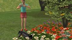 Die Sims 2: Haustiere Screenshot # 23