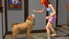 Die Sims 2: Haustiere Screenshot # 24