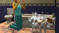 Die Sims 2: Haustiere Screenshot # 26
