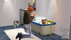 Die Sims 2: Haustiere Screenshot # 4