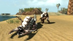 Guild Wars Nightfall Screenshot # 14