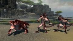 Guild Wars Nightfall Screenshot # 15